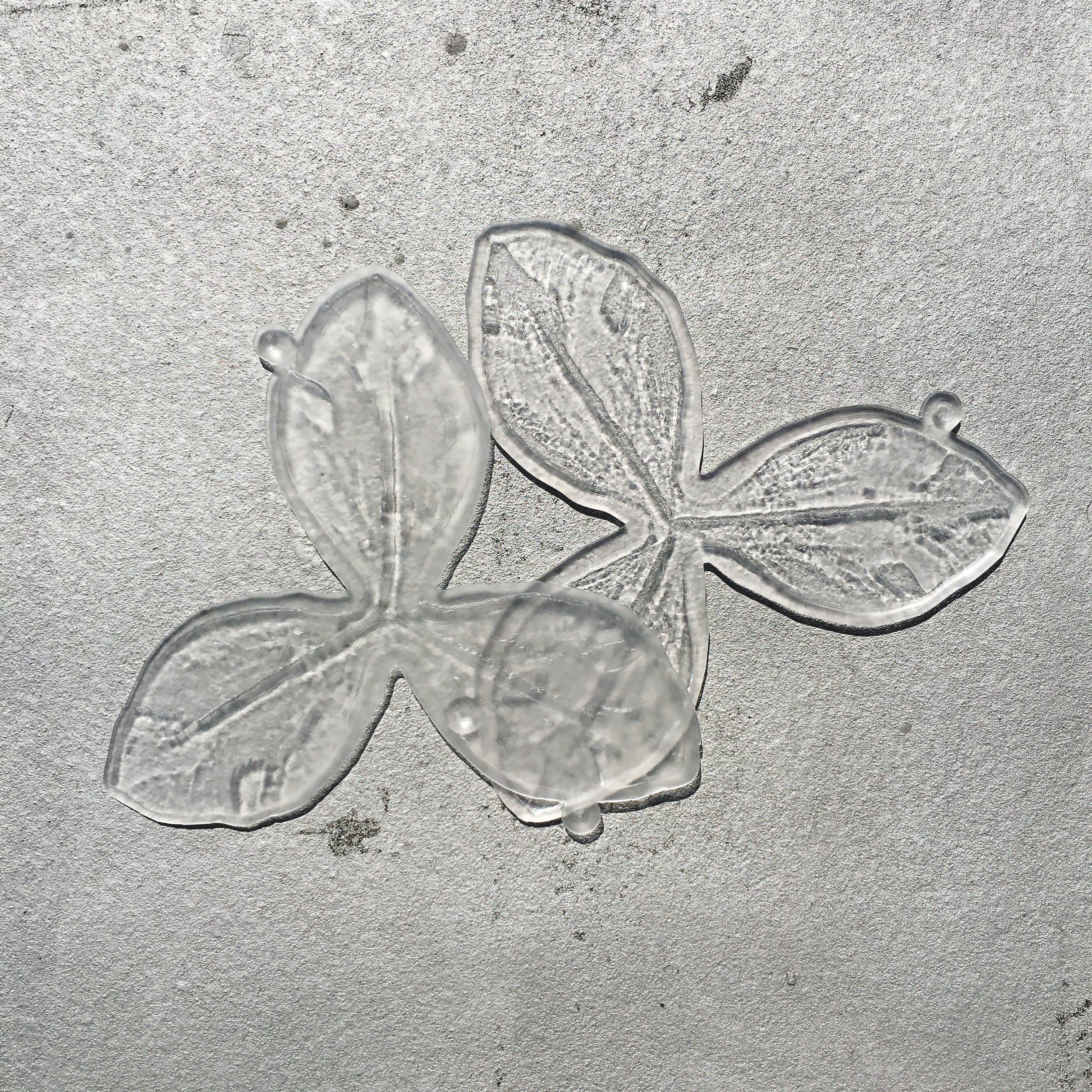 Agar poured into flower-shaped molds