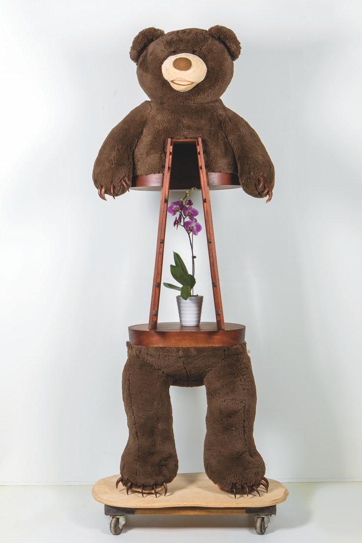 Sculpture of a brown teddy bear with wood claws with a wood cabinet built into its midsection containing a purple orchid