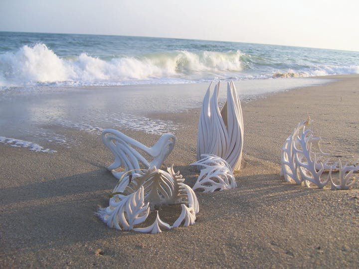 Beach with half buried porcelain sculptures made to look like whale bones and other ocean skeletons