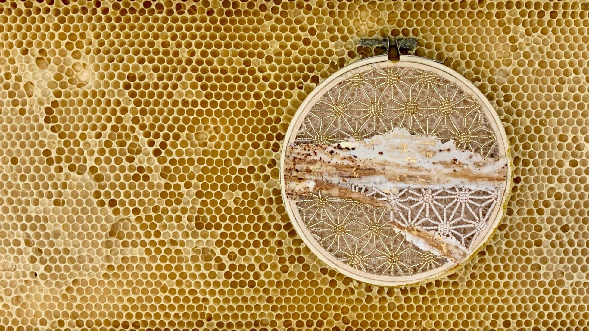 Mixed-media collage in an embroidery hoop embedded in honeycomb panel